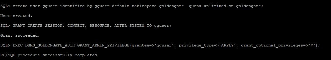 Oracle 12c Configure Step By Step Goldengate Bidirectional